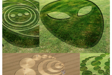 Alien Crop Circles